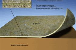 Схема строения биомата