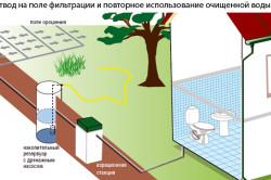 Отвод на поле фильтрации и повторное использование очищенной воды.