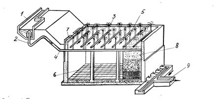 Биологический фильтр (схема).